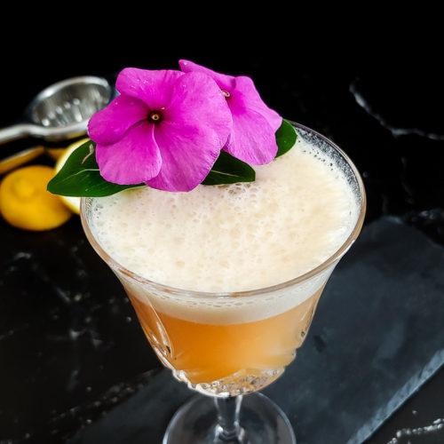 Classic Boston Sour with flower garnish
