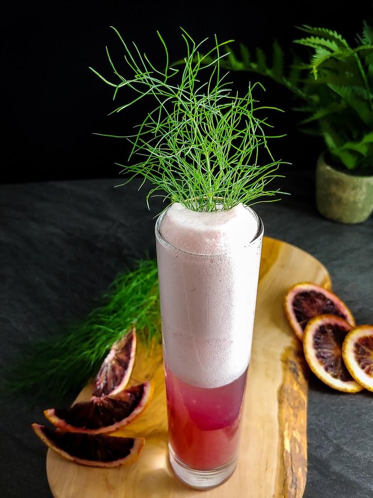 Blood Orange Gin Fizz with fennel garnish